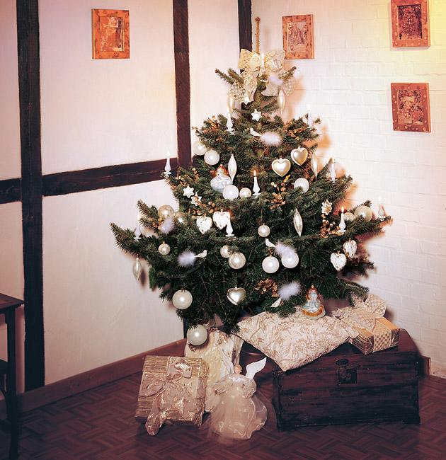 ein kleiner baum bringt gro e freude sch ne weihnachten. Black Bedroom Furniture Sets. Home Design Ideas