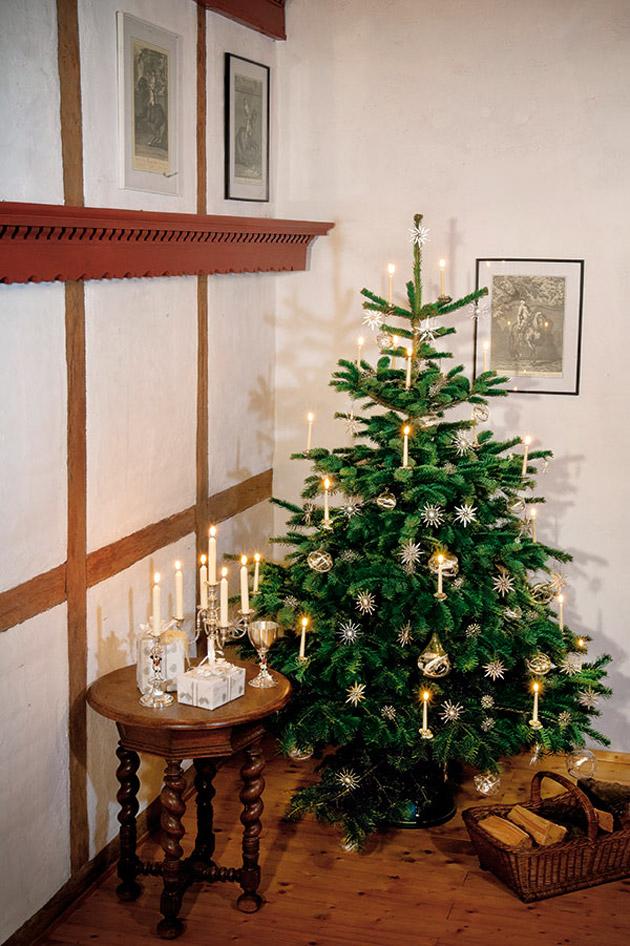 der baum symbol f r natur und leben sch ne weihnachten. Black Bedroom Furniture Sets. Home Design Ideas